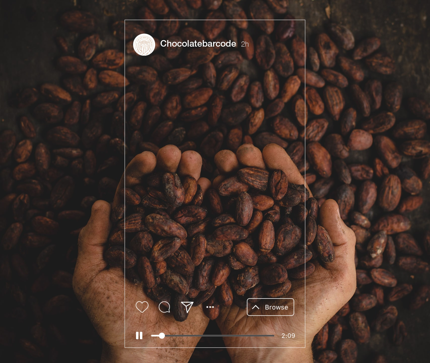 mantik-digital-branding-development-agency-chocolate-packaging-webdesign-design-7-min