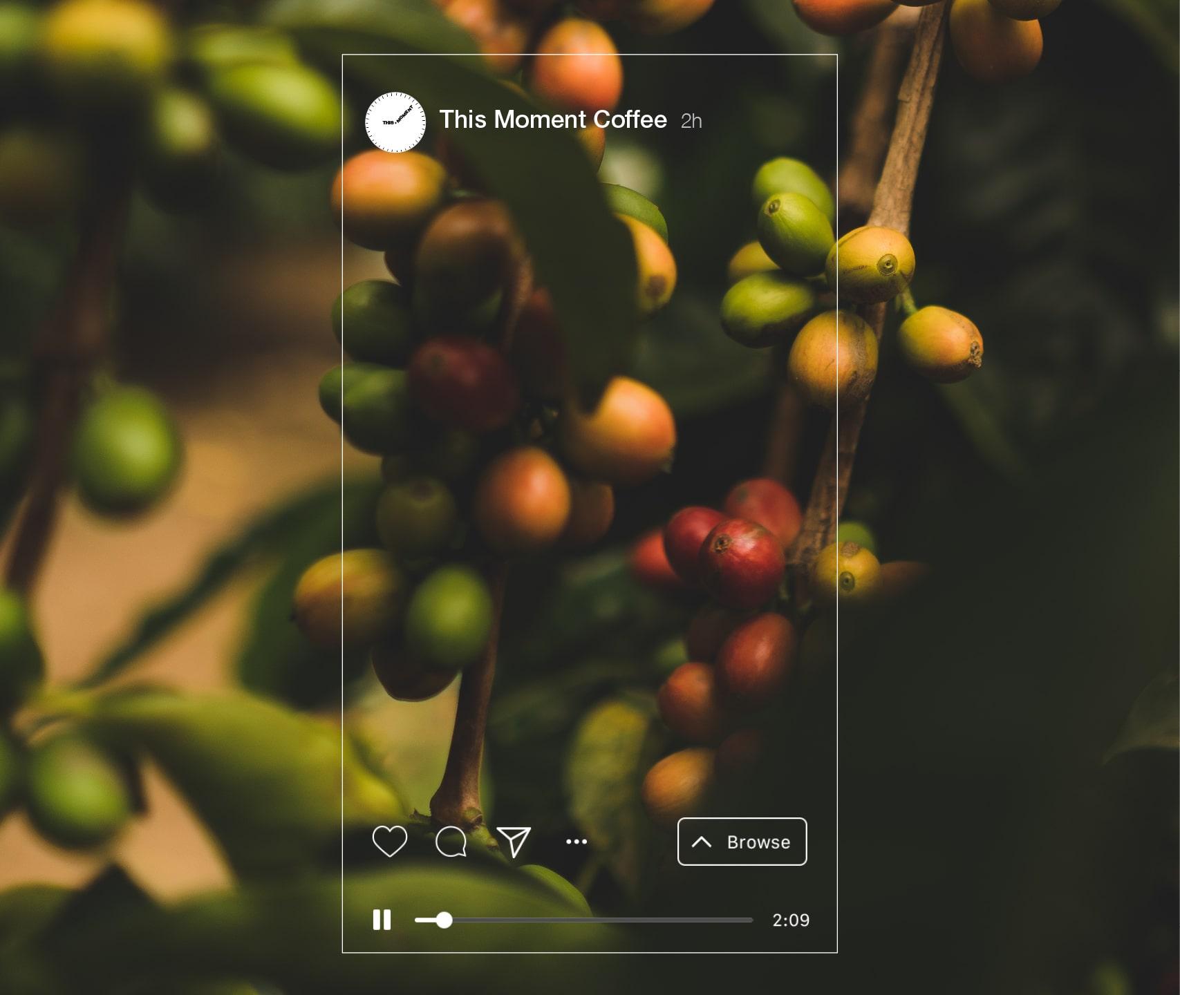 mantik-digital-branding-development-agency-creative-app-ui-web-branding-10-min-1